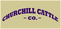 Churchill Cattle Company