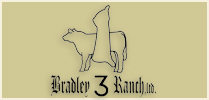 Bradley 3 Ranch Focused on the Future 2017 Heifer Sale
