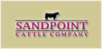 Sandpoint Cattle