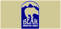 Bear Mountain Angus Ranch