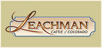 Leachman Cattle