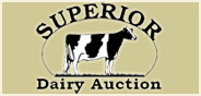 Superior Dairy Auction